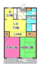 埼玉県新座市野火止4丁目の賃貸マンションの間取り