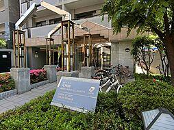 ダイナコート天神南[13階]の外観