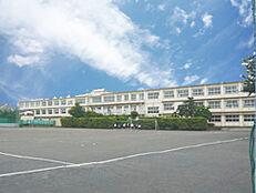 ひばりが丘中学校 約1500m