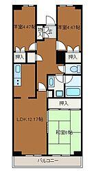 ベラヴィスタ2[1階]の間取り