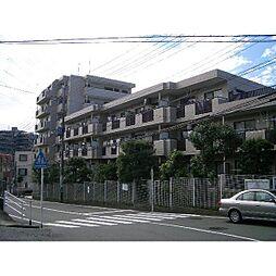 神奈川県横浜市旭区白根6丁目の賃貸マンションの外観