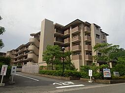 サンシティ桂坂ロイヤル弐番館[4階]の外観
