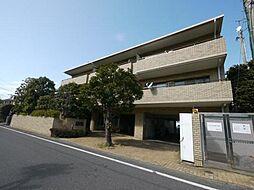 神奈川県茅ヶ崎市東海岸南4丁目の賃貸マンションの外観