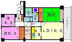 滋賀県守山市浮気町の賃貸マンションの間取り