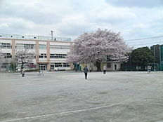 小学校浜田山小学校まで1128m