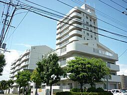 札幌市厚別区厚別中央四条6丁目