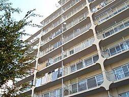 吉敷町スカイハイツ[9階]の外観