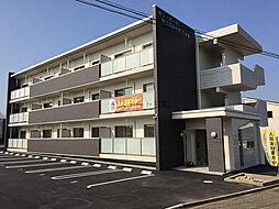 サン・ガーデンWINDOM中津東[303号室]の外観