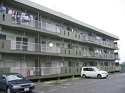 八弘マンション[B305号室]の外観