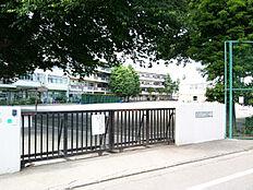 南中学校 約500m