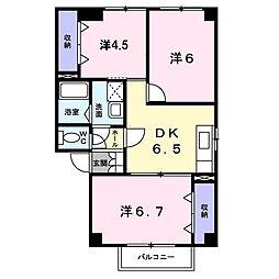 新潟県新潟市中央区女池2丁目の賃貸アパートの間取り