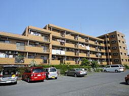 ライオンズマンション鶴ヶ島[3階]の外観
