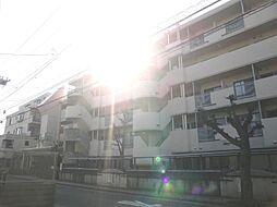 ルネ大宮コートハウス[513号室]の外観