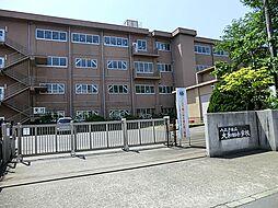 京王八王子駅 3,000万円