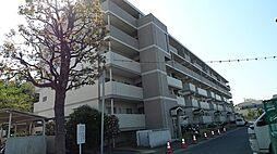 レジエ戸塚深谷[1-213号室]の外観