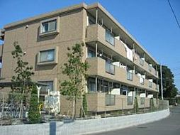 神奈川県茅ヶ崎市みずき1丁目の賃貸マンションの外観