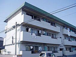 吉川ハイツ[1D号室]の外観