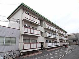 摂津ハイツ[3階]の外観