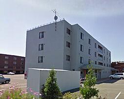 ピアッツァ[306号室]の外観