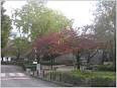パジオン櫛原[307号室]の外観
