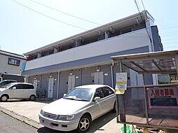 [テラスハウス] 千葉県船橋市松が丘1丁目 の賃貸【千葉県 / 船橋市】の外観