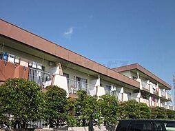 学園サンハイツ[0301号室]の外観