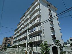 メゾンエスポアール(東大阪)[5階]の外観
