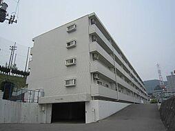 マンション眞鶴[409号室]の外観