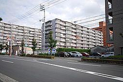 松山市竹原2-1-53