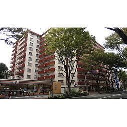 赤坂エクセル810号[810号室]の外観
