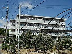 ロイヤルパレス船穂[103号室]の外観