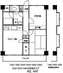 アーバンハイムIII[202・203・205号室]の間取り