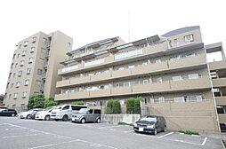 AXIS KASHIWA[1階]の外観