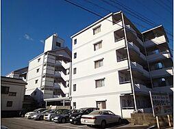 コスモハイツ高須II[B501号号室]の外観