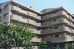サニープレイスアオヤマ[1階]の外観