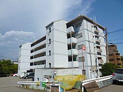 コーポ大社[4階]の外観