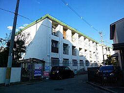 藤井寺大発マンション[215号室号室]の外観