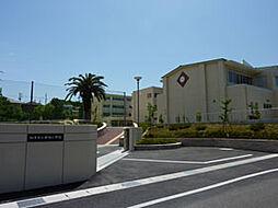 知多市立新田小学校まで1700m 徒歩22分
