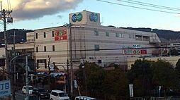 [テラスハウス] 大阪府箕面市坊島3丁目 の賃貸【/】の外観