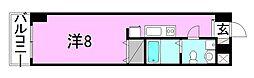 カローラ東雲[1002 号室号室]の間取り