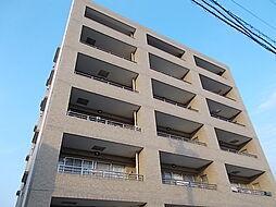 セレスティン[6階]の外観