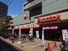 ピーコックストア 石川台店(190m)