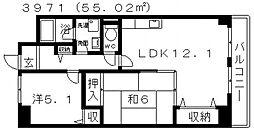 ステラルーチェ 5階2LDKの間取り