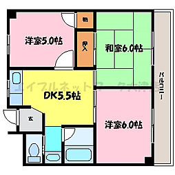 滋賀県大津市皇子が丘2丁目の賃貸マンションの間取り