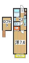 セナリオフォルム柏2[1階]の間取り