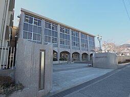 ロマネスク甲南[702号室]の外観