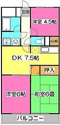 埼玉県所沢市上新井5丁目の賃貸マンションの間取り