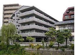 コンチェルト長尾[4階]の外観