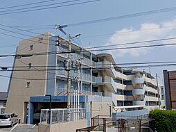 福岡県福岡市東区名島4丁目の賃貸マンションの外観