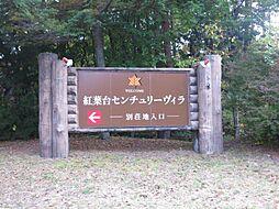 南都留郡鳴沢村